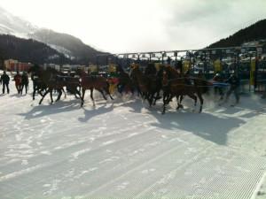 Ein Skikjöring-Rennen wie es sein sollte und am vergangenen Sonntag leider nicht war...