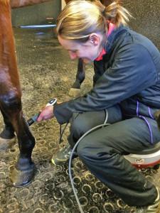 Die Pferdeärztin bei ihrer täglichen Arbeit. – Foto: zvg