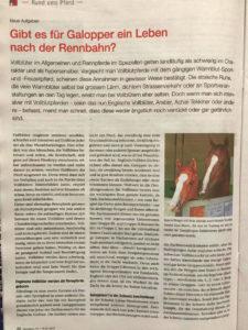 «Gibt es für Galopper ein Leben nach der Rennbahn?», 1. Teil – Zum Lesen aufs Bild klicken.